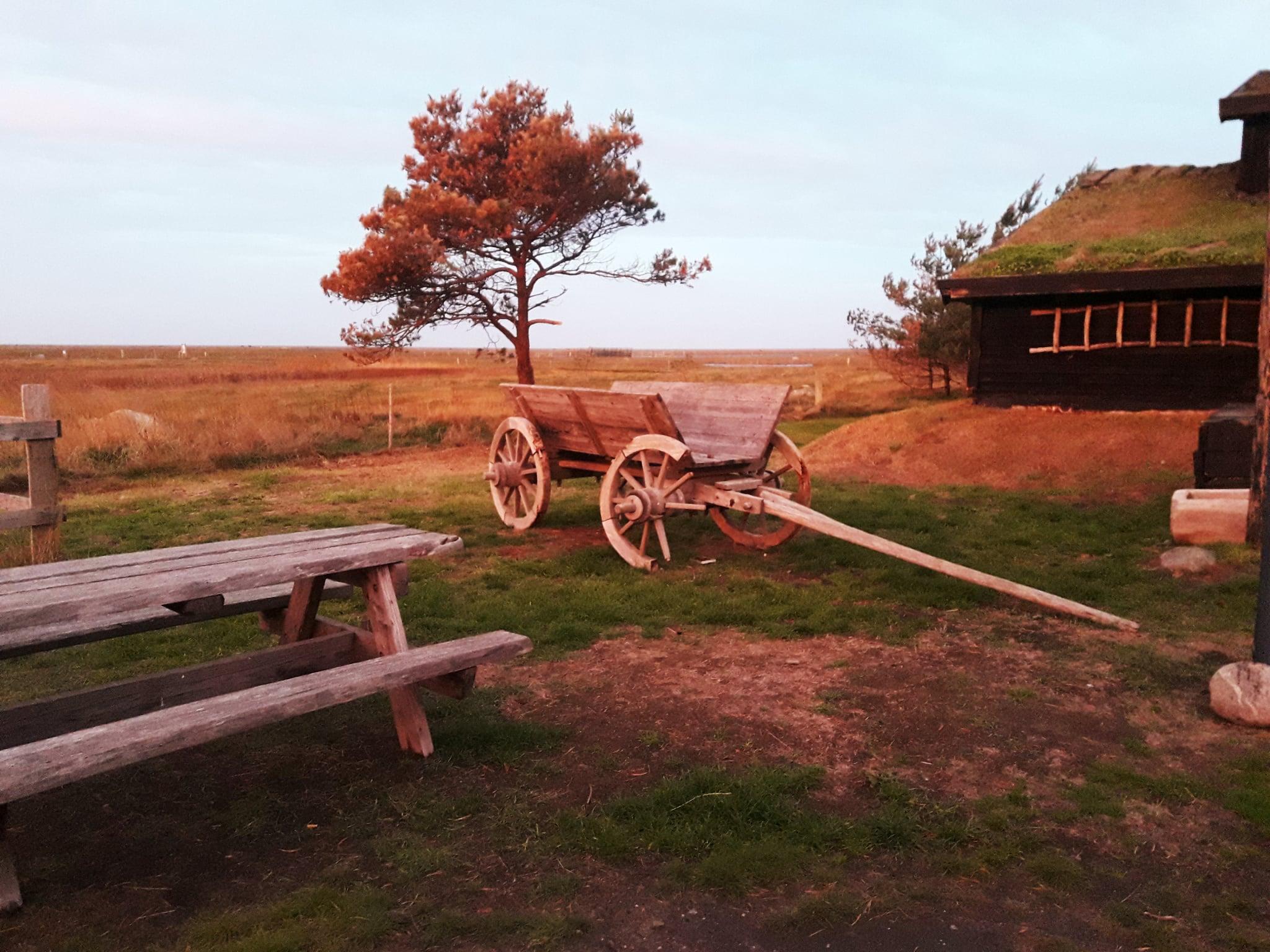 Middelaldermarked på Læsø